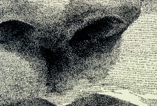 Hd wallpaper portrait - Word Portrait Of Julie Michael Gaughan